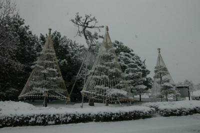 winter560.jpg