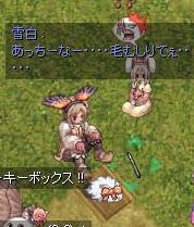 2008_7_26_1.jpg