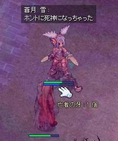 2008_8_9_4.jpg