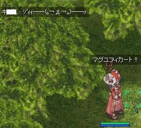 2009_2_22_1.jpg