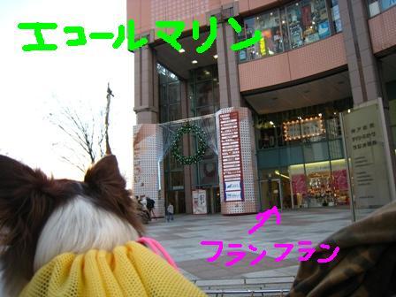 IMG_7724.jpg