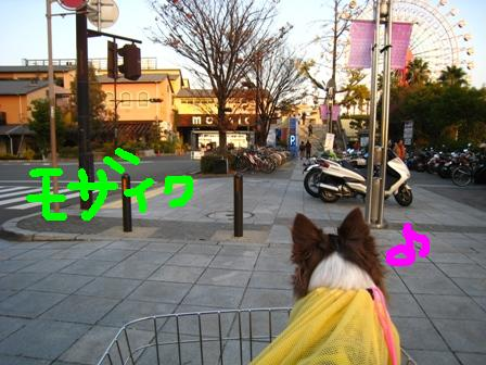 IMG_7726.jpg