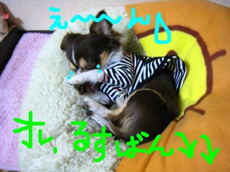 IMG_7759.jpg