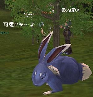 20060409-1.jpg