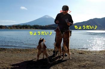 2_20091117211036.jpg