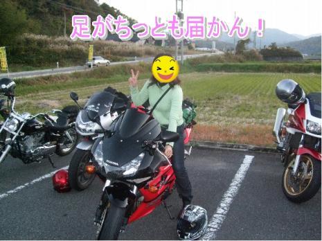 20081113帝釈峡043 コピー1