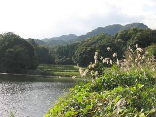 itoroku081