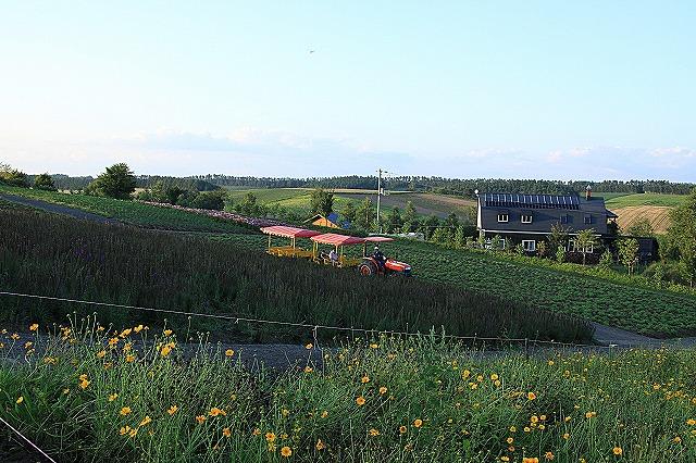 IMG_0436四季彩の丘