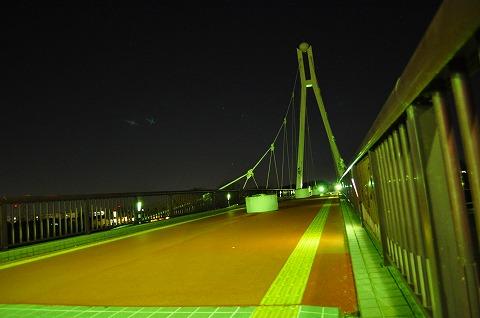 DSC_8891.jpg