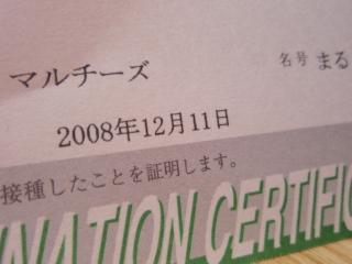 PC293005.jpg