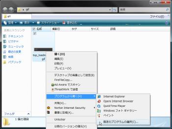 Windows_Photo_Gallery_vista_003.png