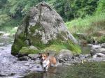 岩をバックに、自然満載で良い気分転換です♪