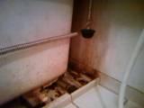 T風呂掃除
