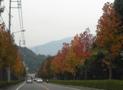 ハウスクリーニング道中風景15