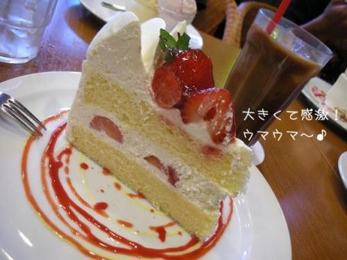 20081013ケーキ