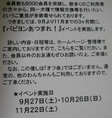 20081026幸手