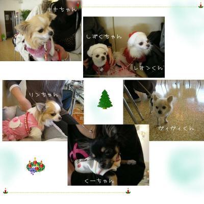 20081216クリスマス1