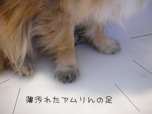200902102.jpg