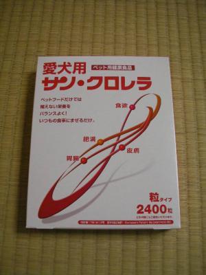 2009040605.jpg