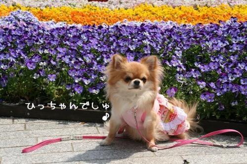 横浜09-04-19 (2)