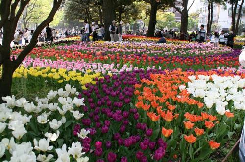 横浜09-04-19 (21)