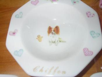 20070116シフォンフード皿
