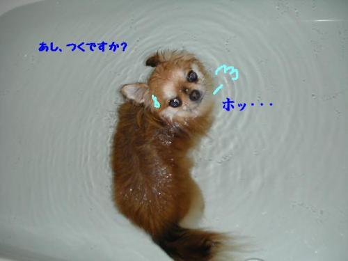 2007あむお風呂