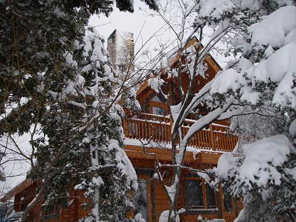 冬 その2(12月)