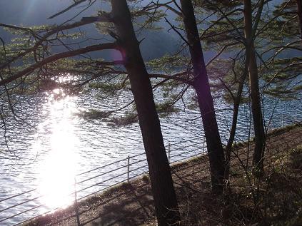 近所の湖(4月5日) その1