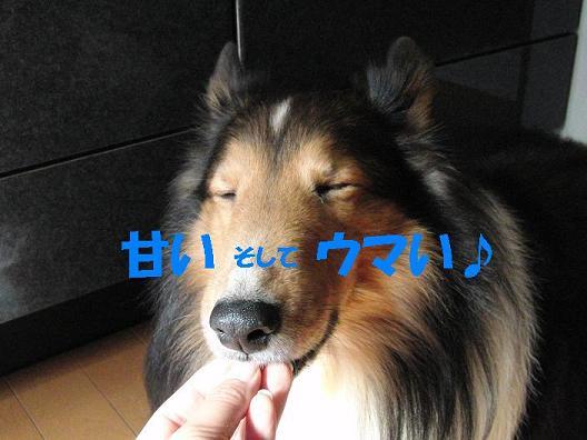 ★07 CIMG0876