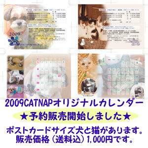 10107135958.jpg