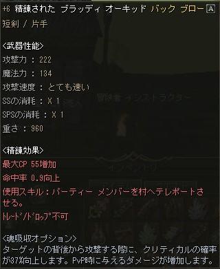 +6a.jpg