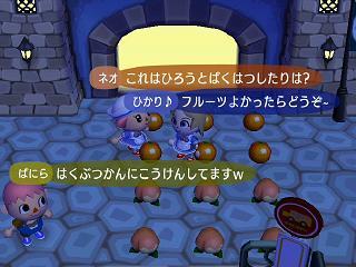 どうぶつの森0243WiFiフルーツ★