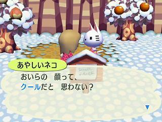 どうぶつの森0294あやしいネコ★