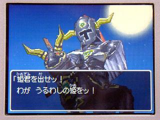 ドラクエ9-021姫君を出せ★