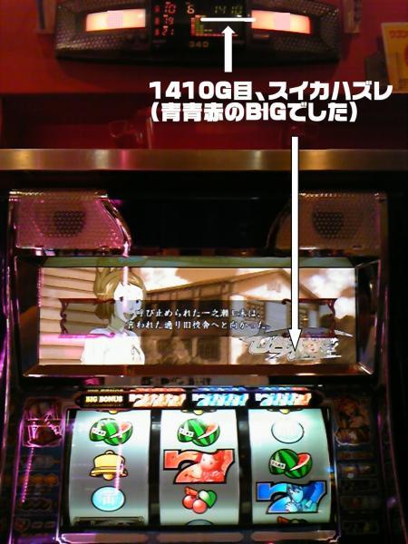 gDVC00251.jpg