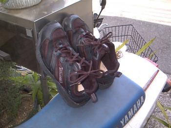 SPALDINGの靴