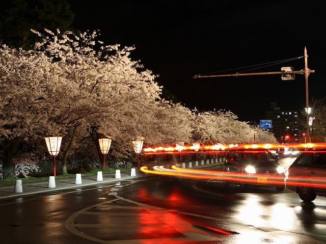 夜桜 弘前公園 弘前市 スナップ