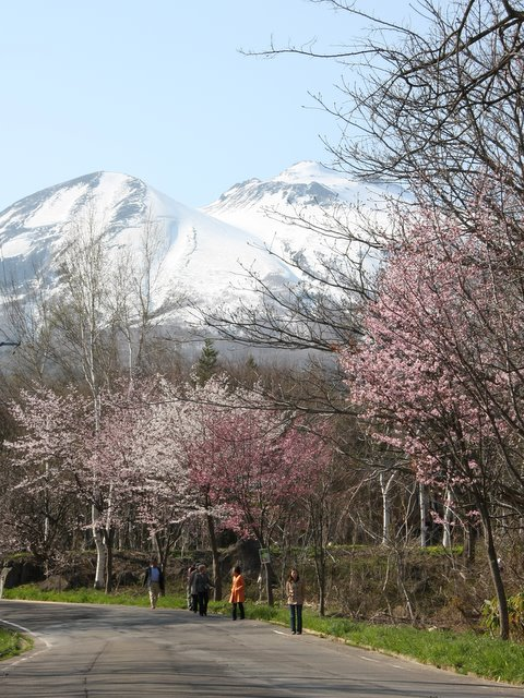 百沢 岩木山