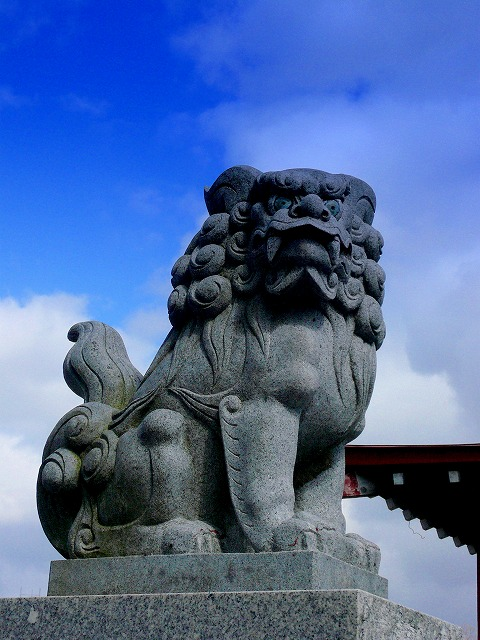 猿賀神社 神前挙式 ハラコ企画 写真 スナップ ハッピー フォト