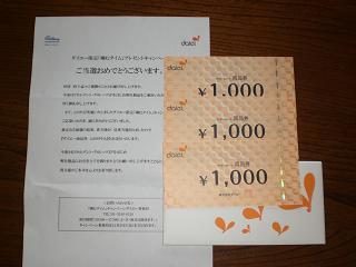 ダイエーガム3000円
