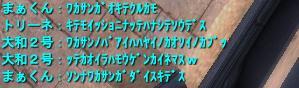 2008-11-09 03-13-48