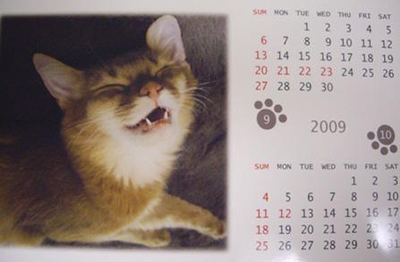 ビビたんカレンダー03