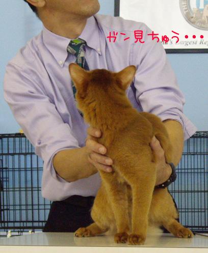 18審査ロー君3