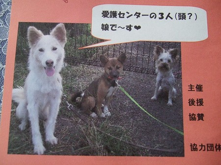 2008_0919_20.jpg
