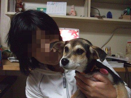 2008_1217_2.jpg