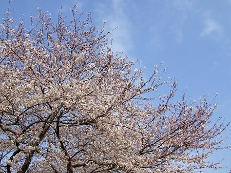 2009_0404_1.jpg