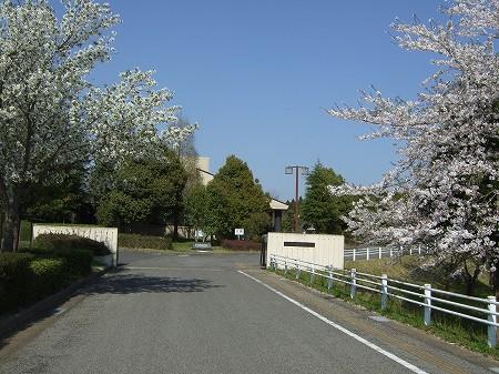 2009_0410_1.jpg