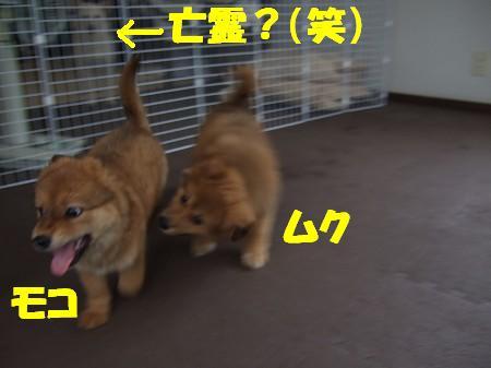 2009_0625_3.jpg