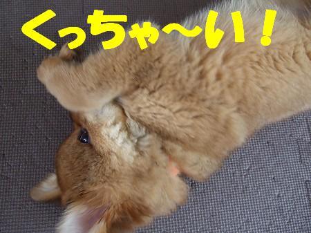 2009_0629_5.jpg
